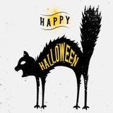 Halloweenowy kota kartka z pozdrowieniami z teksturą Zdjęcie Royalty Free