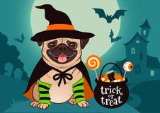 Halloweenowy mopsa pies ubierał jako czarownica z kapeluszem, przylądek, kocioł z ilustracji