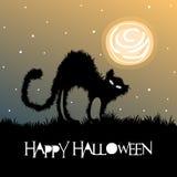 Halloweenowy powitanie z czarnym kotem i księżyc w pełni Fotografia Royalty Free