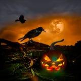 Halloweenowy projekta księżyc w pełni kruków Jack O lampion Zdjęcie Royalty Free