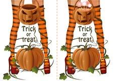 Halloweenowy projekta set Zbliżenie czarownicy nogi fotografia royalty free
