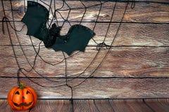 Halloweenowy spiderwe zdjęcia stock