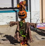 Halloweenowy strach na wróble Z Obdartym żakietem Na chodniczku obrazy stock