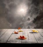 Halloweenowy tło Zdjęcie Stock