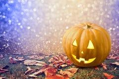 Halloweenowy tło z dyniowym dźwigarka lampionem na trawie obraz stock