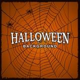 Halloweenowy tło z siecią pająk Obraz Royalty Free