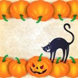 Halloweenowy tło z baniami, czarnym kotem i copyspace, Obraz Royalty Free