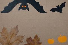 Halloweenowy wakacyjny tło, opróżnia papier dla teksta, bani, liści klonowych i nietoperza, Widok od above z kopii przestrzenią Zdjęcia Royalty Free
