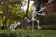Halloweenowy wystrój obraz royalty free
