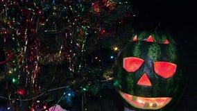 Halloweens watermelon under the christmas tree stock video footage