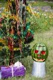 Halloweens watermelon under the christmas tree Stock Photos