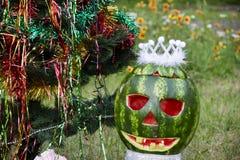 Halloweens watermelon under the christmas tree Stock Photography