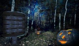 Halloweenv skog Arkivbilder
