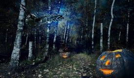 Halloweenv skog Royaltyfri Foto
