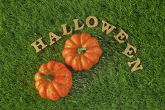 Hallowen e zucche sul fondo dell'erba, sul concetto della natura e sull'idea di legno Fotografia Stock Libera da Diritti