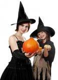 Hallowen häxor Arkivbild