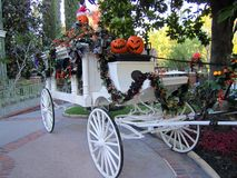 Hallowen Horse-drawn vehicle. White hallowen horse drawn in Disney Park in Los Angeles. Pumpkins Royalty Free Stock Photography