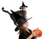 Hallowen lite häxan Arkivfoton