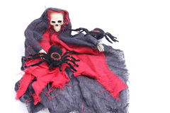 Hallowen spider/skeleton. Skeleton dresses in rags with 2 pet spiders on white background Stock Photography