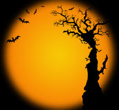 Hallowwen background illustration with bat tree Royalty Free Stock Photos
