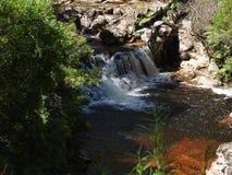 Halls Falls, Pyengana, Tasmania Stock Images