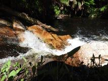 Halls Falls, Pyengana, Tasmania Royalty Free Stock Photography