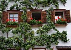 Hallstatt,Austria. Windows in town Hallstatt in Salzkammergut, Austria Stock Photos
