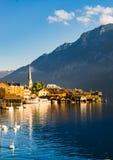 Hallstatt. Beautiful waterside village with swan ,Hallstatt ,Austria Royalty Free Stock Photography