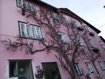 Hallstatt das Welt-` s am schönsten haben Sie Bäume ` s Rosahaus lizenzfreie stockfotos