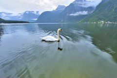 Hallstatt Lake on a Gloomy Day Stock Photo