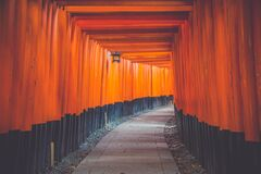 Hallway in Blue and Orange Wall Paint Stock Images