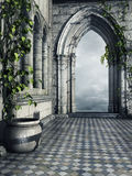 Hallway with ivy. Hallway in a fantasy castle with a flower pot and ivy Royalty Free Stock Photography