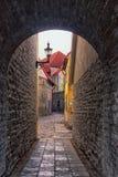 Hallway In Tallinn Royalty Free Stock Images