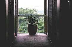 Hallway and window Stock Photography