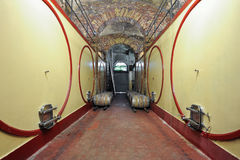 Hallway wine cellar Royalty Free Stock Images