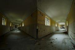 The Hallways Stock Images