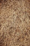 Fall Background of a hay bail close up royalty free stock images