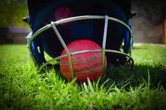 Halmet и шарик сверчка на зеленой траве Halmet защищает отбивающий мяч от быстрого шарика стоковая фотография rf