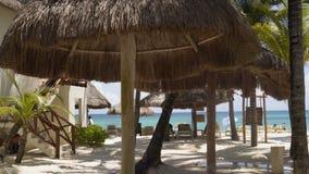 Halmtäcka-tak strandhus Palm Beach mot bakgrunden av det karibiska havet 4K arkivfilmer