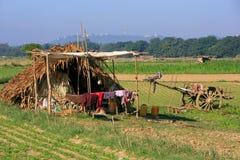 Halmtäckt koja i ett lantgårdfält, Amarapura, Myanmar Royaltyfri Bild