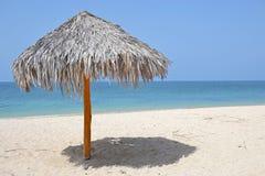 Halmtäckt strand Royaltyfri Fotografi