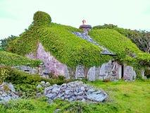 Halmtäckt stuga på Inis Mor arkivfoton