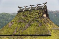 Halmtäckt tak Arkivfoton