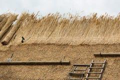 Halmtäckt tak med sugrör eller vass och hjälpmedel Royaltyfri Bild