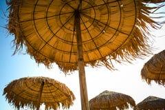 Halmtäckte paraplyer Arkivfoton