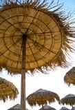 Halmtäckte paraplyer Royaltyfri Fotografi
