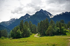 Góra i las Obrazy Stock