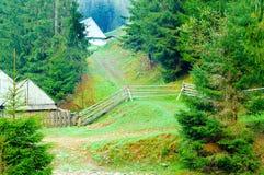 Halna ścieżka prowadzi do domu na tle drzewa, pojęcie przyroda, kopii przestrzeń, zdjęcie stock
