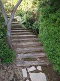 Halna ścieżka w Provence Zdjęcia Royalty Free
