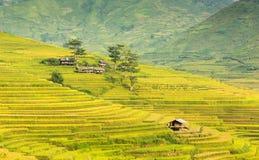 Halna buda i natura w ryżu tarasie Wietnam krajobraz Obrazy Royalty Free